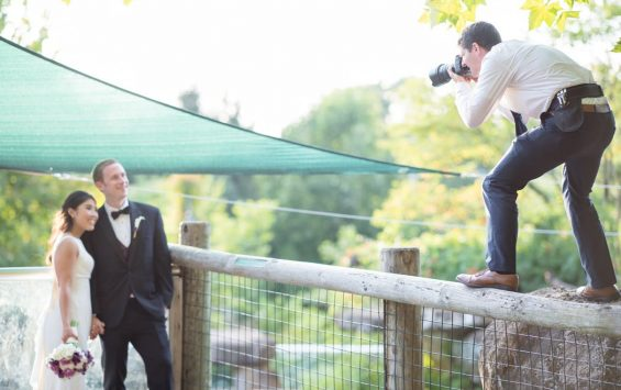 How To Get The Best Wedding Photographer in Hunter Valley