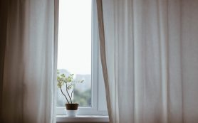 Where Can The Value Be Found With Curtains From Adelaide Stores?